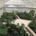 Year 3 Visit to Kew Gardens